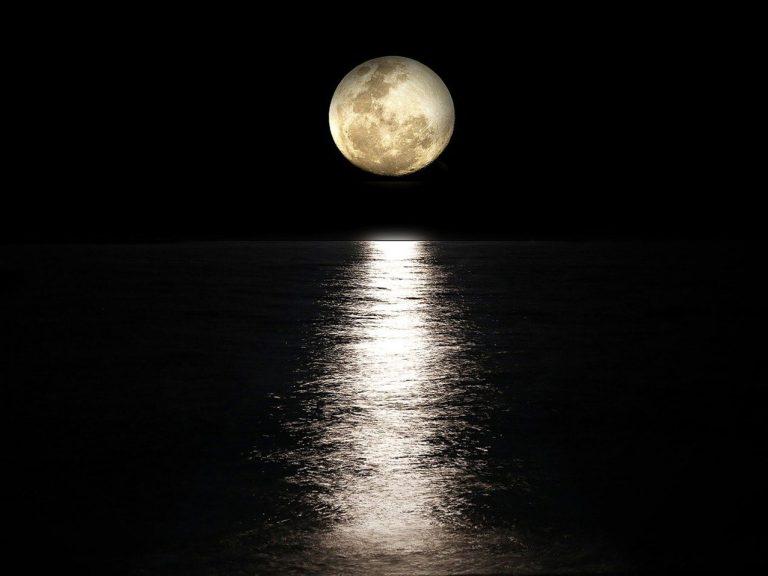 The Moon Between My Legs